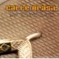 VARIOS - CALLE BRASIL