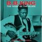 B.B. KING:KING OF THE BLUES (LP) -IMPORTACION-