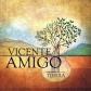 VICENTE AMIGO:TIERRA (JEWEL)