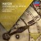 HAYDN:SINF.94,100 Y 101-DORATI