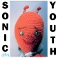 SONIC YOUTH:DIRTY