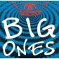 AEROSMITH:BIG ONES -16TR- (IMPORTACION)