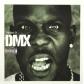DMX:THE BEST OF DMX